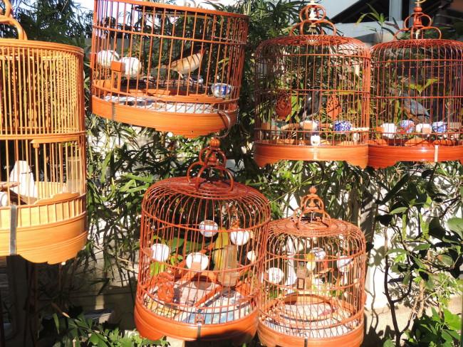 Hong Kong Bird Market
